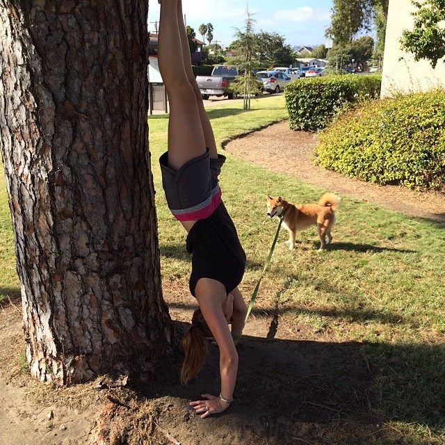 Ginger likes to practice handstand holds while walking her dog, Taco.
