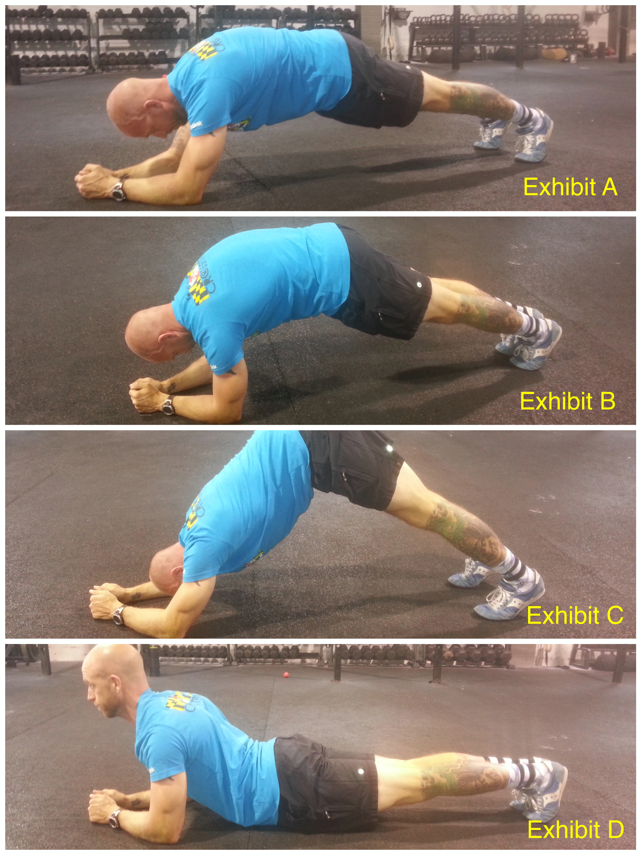 Planks - A Gateway Exercise! - Invictus   Redefining Fitness